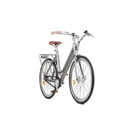 City bike electri gray