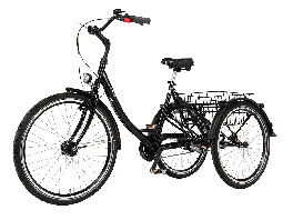 Adult Unisex Tricycle Proven 26/24