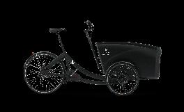 Cargobike Elettrico Boxter Triobike Nero