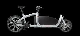 Cargobike triciclo Elettrico Cargo Triobike