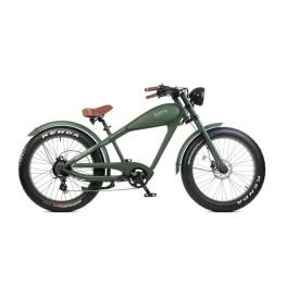 Fat bike elettrica verde electri