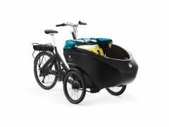 Cargobike Elettrico Mono Triobike Nero con capote